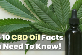 10 CBD Facts That You NEED To Know!